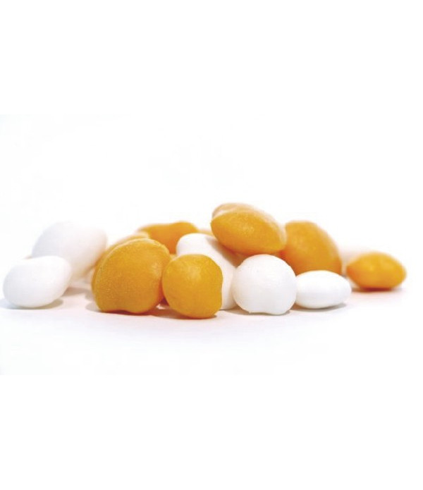 IMITATION LUPIN BEAN WHITE SMALL/MEDIUM